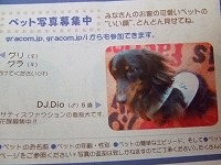 DSCF3967.jpg