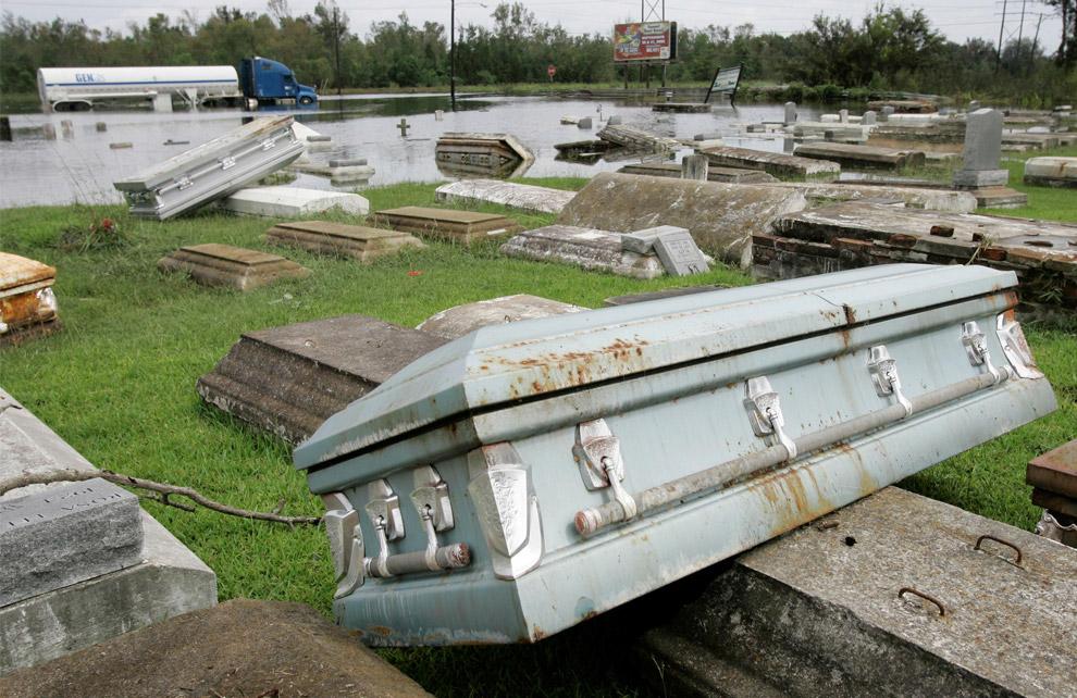 墓掘りハリケーン