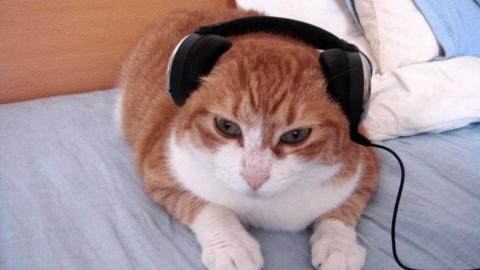 音楽聴いたり