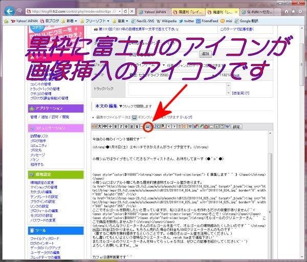 20110110_002.jpg