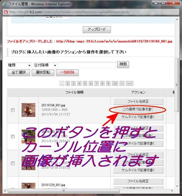 20110110_005.jpg