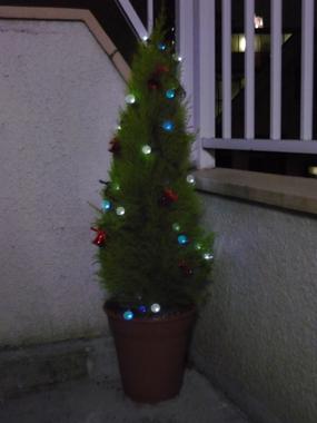 20081209 christmastree