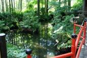 真姿の池 6