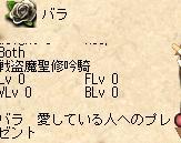20050830010111.jpg