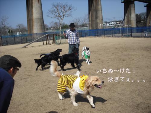 犬使いのコピー