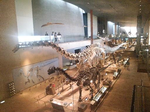 いのちのたび博物館・・・②