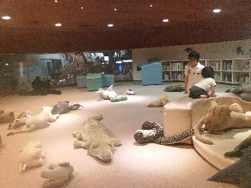 博物館・・・幼児の遊び場