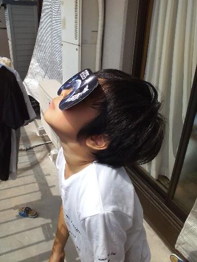 日食観察するちぃ