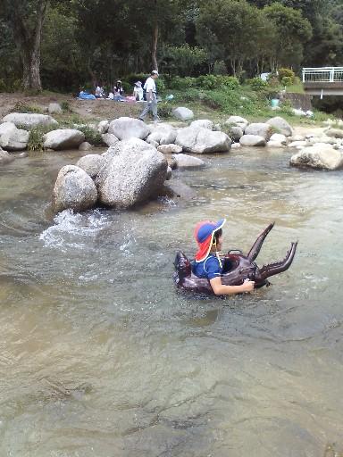 ちぃ、川を流れる
