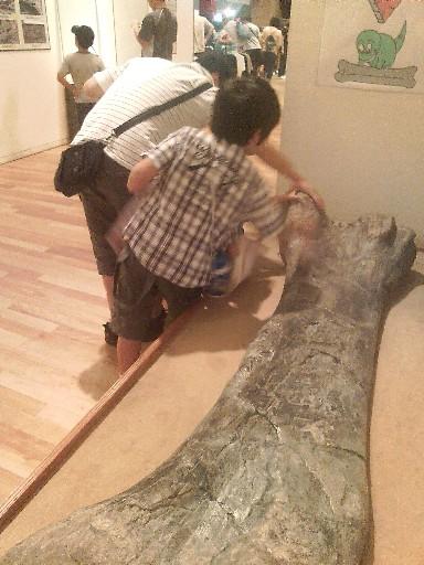 本物の恐竜の骨を触る