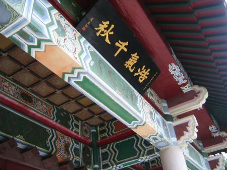 4163台湾色彩
