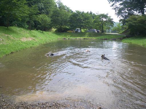 7/23泳ぐ