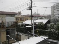 雪のお出かけ