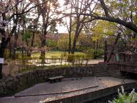 二ヶ領用水_緑化公園07