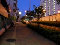 SANY0187.jpg