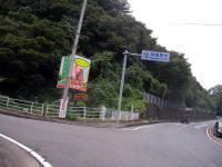 SANY0365.jpg