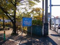 SANY0673.jpg