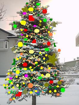 tree.jpg.jpg