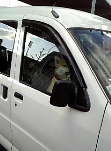 近未来ドライバー??