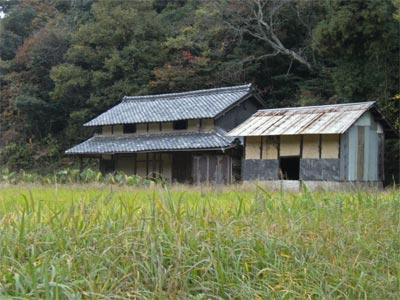 20081115_01.jpg