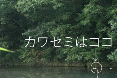 20090816_04.jpg