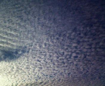 20081008-3.jpg