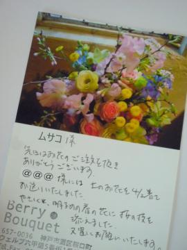 P1140632-2.jpg