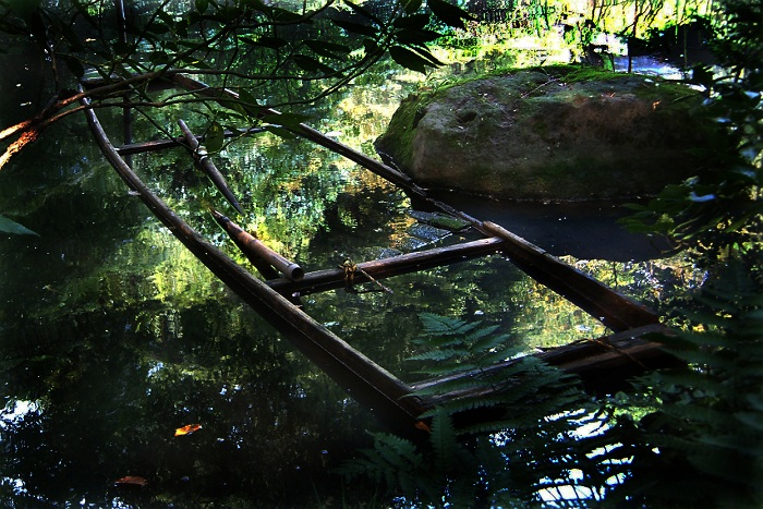 秋色の淵 新潟県中津川