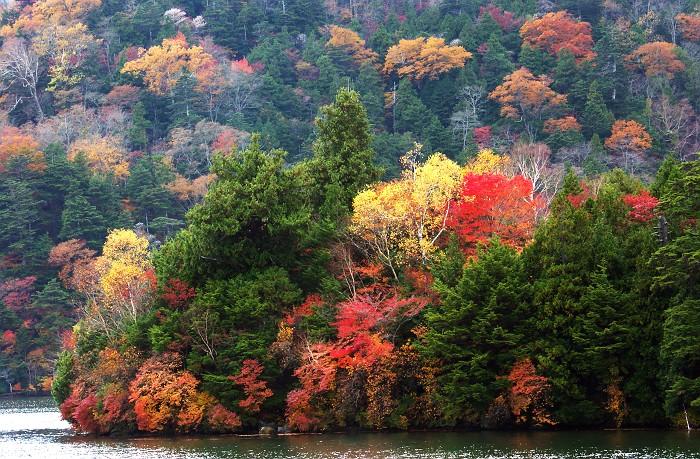 錦秋 奥日光湯の湖