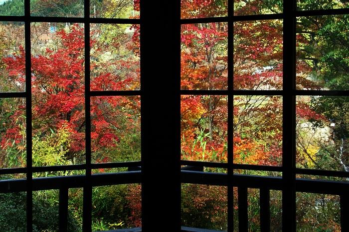 秋に染まる 栃木県足尾
