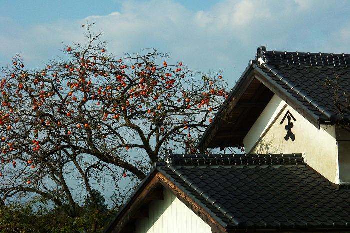 秋を味わう 栃木県壬生町
