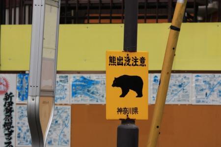 熊出没注意!!