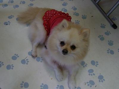 nana19.11.11.11.jpg
