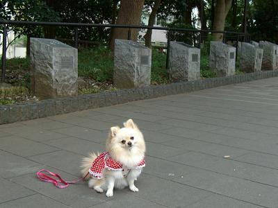 nana19.11.16.3.jpg