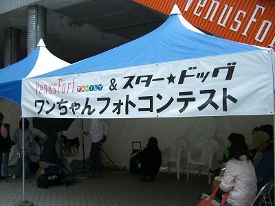 nana19.11.17.6.jpg