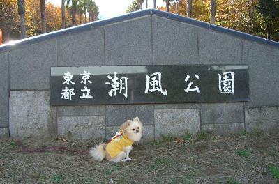 nana19.11.23.13.jpg