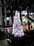 2006年WTCピンクのツリー