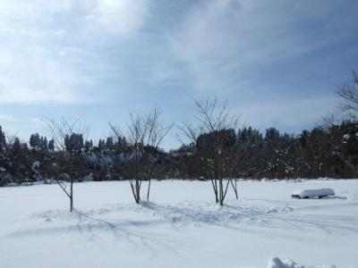 雪を求めて~