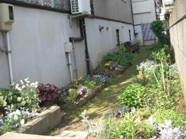 庭改造計画1