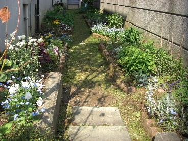 庭改造計画2