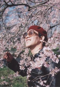 2006.4.7 徳佐のしだれ桜 2
