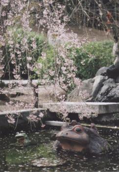 母と京都へ 1