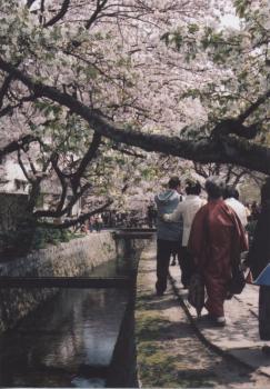 母と京都へ 4