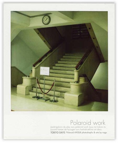 pola_a.jpg