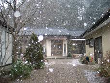01-12 雪