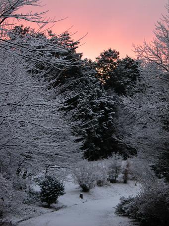 01-12 雪景色(大)