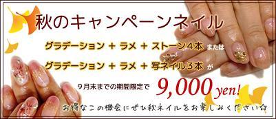 201109akinail.jpg