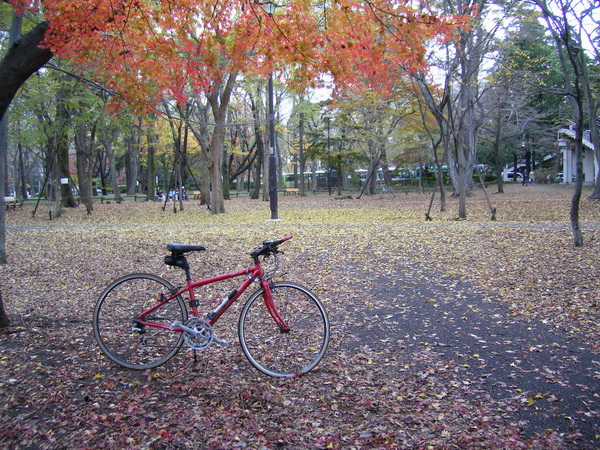井の頭公園と自転車
