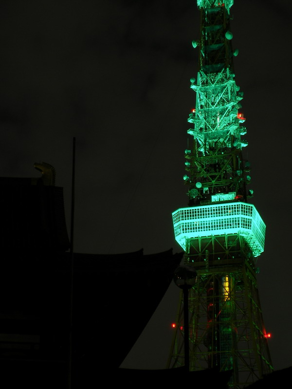 緑タワーと寺アップ
