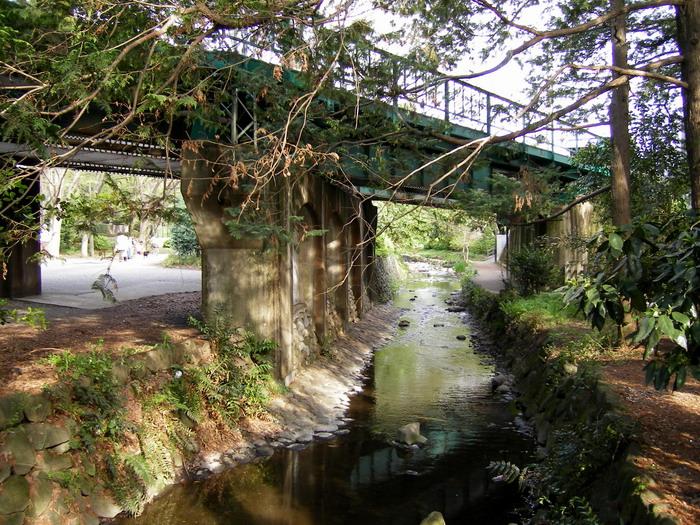 井の頭線ガード下神田川